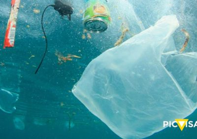 Global alliances to promote plastic waste recycling